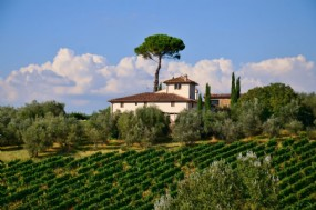 Luxury villas to rent and luxury hotels in Tuscany